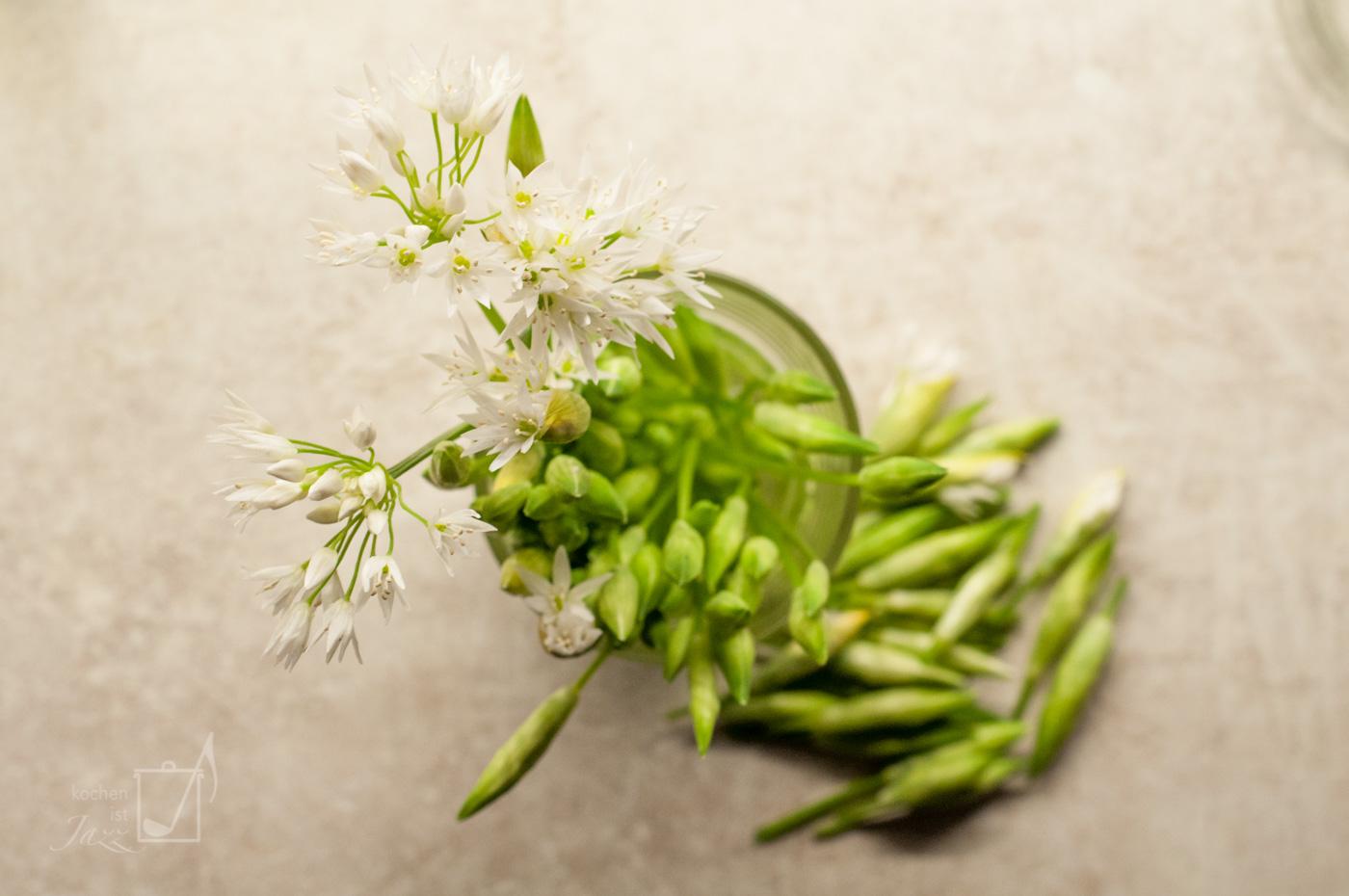 Bärlauchblüten