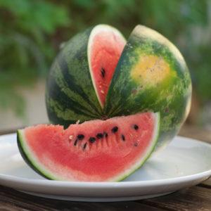 Das Geheimnis der Melonenspechte